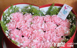 粉色康乃馨的花语是什么?