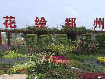 郑州免费花展等你来! 50万盆花卉新品竞相开放