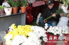 威海:清明节未至素色鲜花大量上市 价格大幅上涨