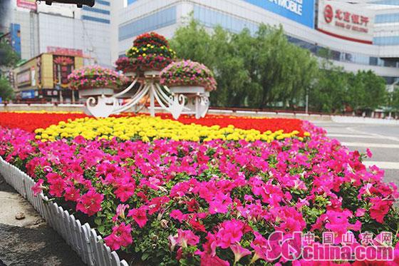 济南八一立交桥附近的绿化美化带