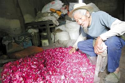 重庆江津:9旬老翁靠卖玫瑰花养活8孩子 后山6亩地种满花