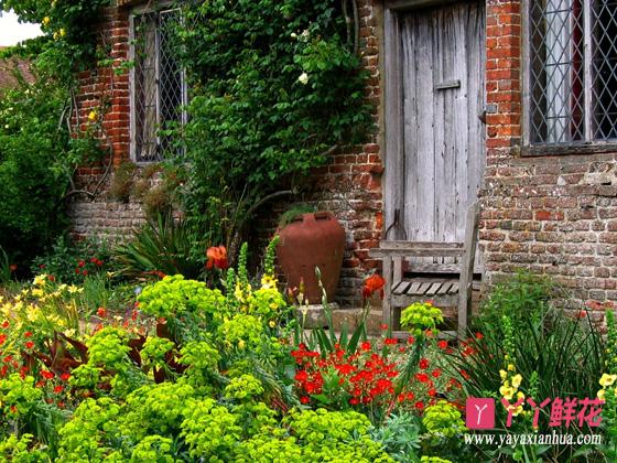 庭院花木养护的方法