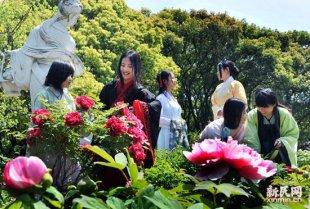 人间四月赏牡丹 上海植物园牡丹花展迎宾客