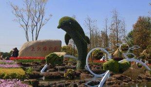 上海:花卉进入最佳观赏期 植物园等地将办花展