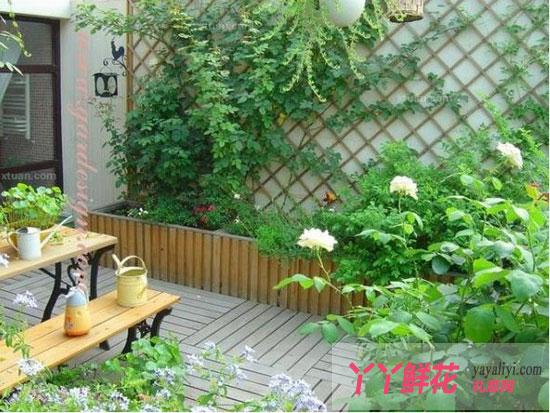 家庭阳台绿化巧布置