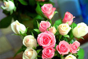 西安鲜花送给社区最可爱的人