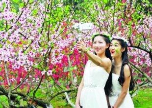 花都开好了!武汉植物园迎来最美赏花季