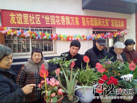 唐山友谊里社区:鲜花搬出邻共赏 猜谜打鼓迎元宵