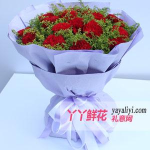 订花19枝红色康乃馨