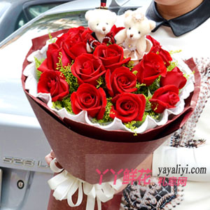 19朵红玫瑰2小熊