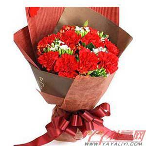西安鲜花11朵红康乃馨(幸福寄语)