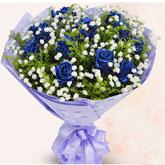 西安订花11朵蓝色妖姬