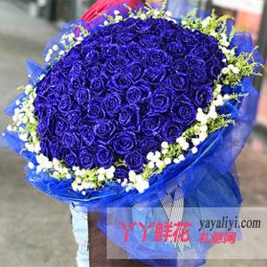 蓝色至爱 - 鲜花99朵蓝玫瑰免费配送