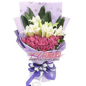 鲜花免费配送22枝紫玫瑰4枝多头铁炮百合(紫色浪漫)