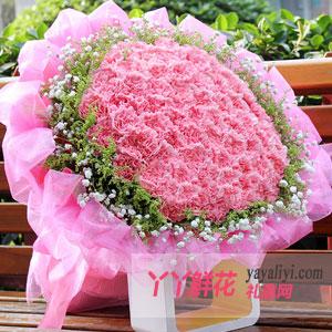 鲜花 - 99朵粉色康乃馨鲜花预定