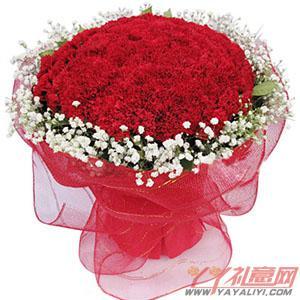 鲜花99朵红色康乃馨