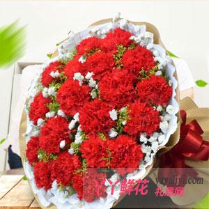 19朵红色康乃馨送花