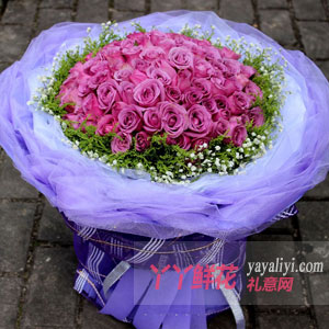 紫是爱你 - 66朵紫玫瑰