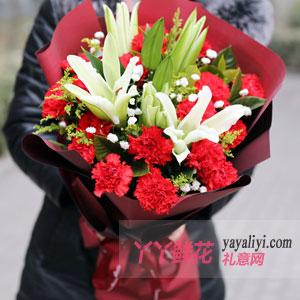 19朵红色康乃馨6朵百合红色包装