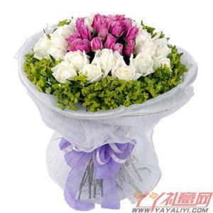 鲜花19朵紫玫瑰19朵白玫瑰预订