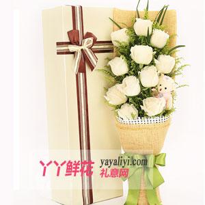 纯真的你 - 鲜花速递11朵白玫瑰1小熊