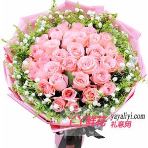 鲜花33枝粉玫瑰1小熊预订(一见钟情)