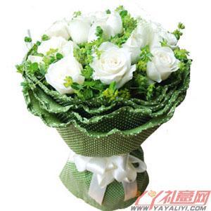 鲜花19枝白玫瑰