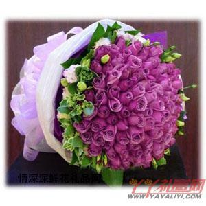 鲜花99枝紫玫瑰