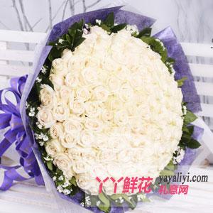 特别的爱 - 鲜花99枝白玫瑰在线预订