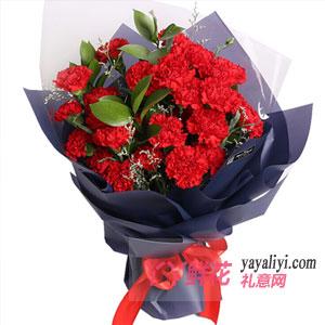 教师节鲜花33朵康乃馨(教师节献礼)