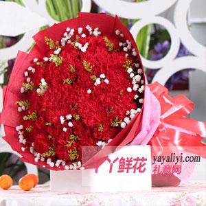 鲜花33朵红色康乃馨免费送花
