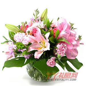 12枝粉色康乃馨2枝多头粉色香水百合