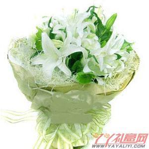 鲜花6枝白色香水百合(百年好合)