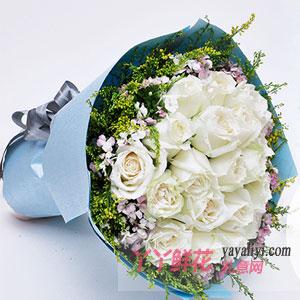 鲜花速递19朵白玫瑰
