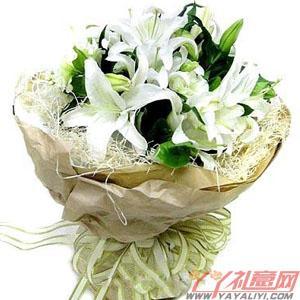 鲜花10枝白香水百合(冬日恋情)