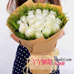 19朵玫瑰(我的心只为你)