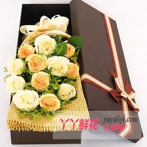 5朵香槟玫瑰6朵白玫瑰(绵绵情话)礼盒