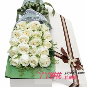 我的世界只有你 - 19朵白玫瑰白色礼盒
