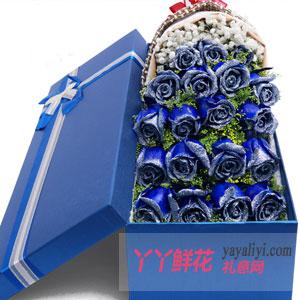 鲜花店19朵蓝色玫瑰礼盒