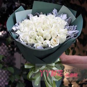 网上订购33朵白玫瑰