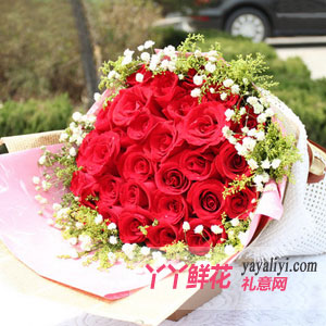 33支红玫瑰鲜花速递