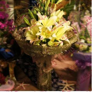 鲜花速递7枝黄色香水百合(相伴)