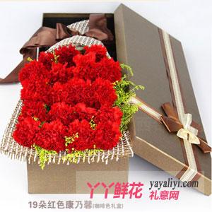 长青 - 19枝红色康乃馨礼盒鲜花速递