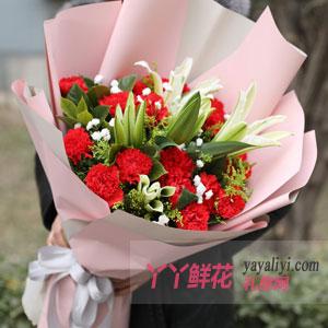 最纯真的美好 - 19朵红色康乃馨6朵百合
