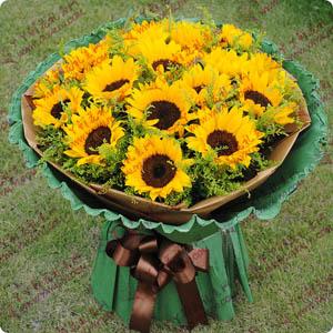 最美的笑容 - 鲜花速递18支向日葵
