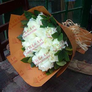 鲜花速递12支白玫瑰
