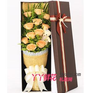 爱如此美丽 - 鲜花11支香槟玫瑰小熊礼盒