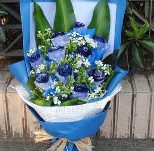 痴痴的爱 - 鲜花11支蓝玫瑰蓝色妖姬