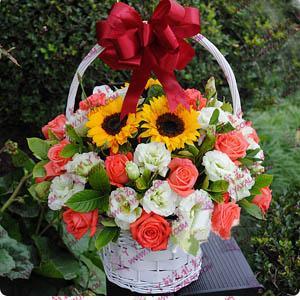 20支粉玫瑰配向日葵精美花篮