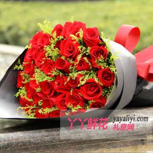 鲜花33支精品红玫瑰